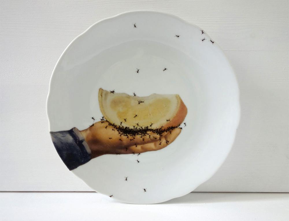 أطباق خزفية مزخرفة برسومات يدوية من حشود النمل الزاحف إبتكرته الفنانة إيفلين براكلو